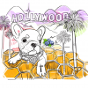 coffee_beans_blend_Hollywood